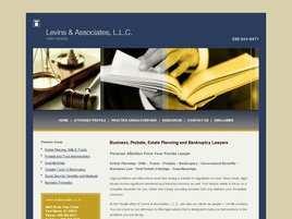 Levins and Associates, LLC