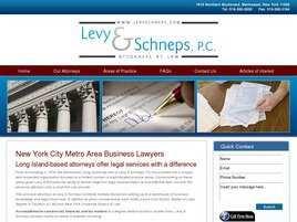 Kurre Levy Schneps LLP